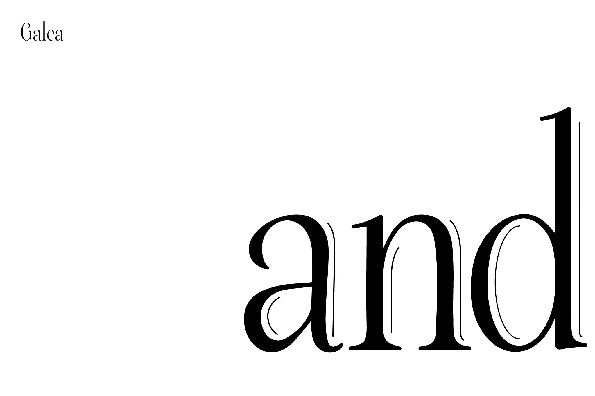 andinc_type_galea©arbol
